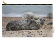 Seal Pup On Beach Carry-all Pouch