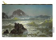Seal Rock California Carry-all Pouch