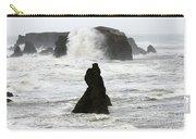 Seascape Bandon Oregon 1 Carry-all Pouch