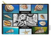 Seashell Collection Carry-all Pouch by Kaye Menner