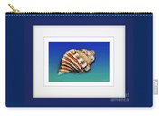 Seashell Wall Art 1 - Blue Frame Carry-all Pouch