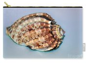 Seashell Wall Art 9 - Harpa Ventricosa Carry-all Pouch