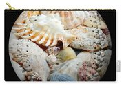 Seashells Baseball Square Carry-all Pouch