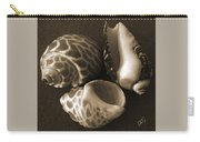 Seashells Spectacular No 1 Carry-all Pouch by Ben and Raisa Gertsberg