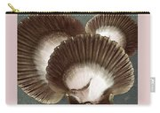 Seashells Spectacular No 22 Carry-all Pouch by Ben and Raisa Gertsberg