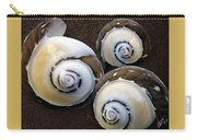 Seashells Spectacular No 23 Carry-all Pouch by Ben and Raisa Gertsberg