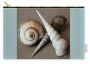 Seashells Spectacular No 24 Carry-all Pouch by Ben and Raisa Gertsberg