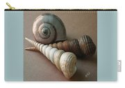 Seashells Spectacular No 29  Carry-all Pouch by Ben and Raisa Gertsberg