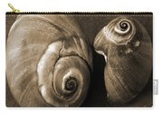Seashells Spectacular No 6 Carry-all Pouch by Ben and Raisa Gertsberg
