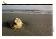 Seashels By The Seashore Carry-all Pouch