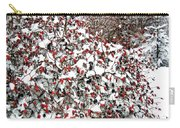 Secluded Winter Haven Carry-all Pouch