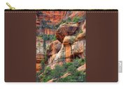 Sedona Stripes Carry-all Pouch by Carol Groenen