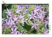 Sedum Closeup Carry-all Pouch