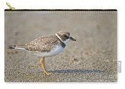 Semi-palmated Plover Pictures 34 Carry-all Pouch
