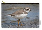 Semi-palmated Plover Pictures 59 Carry-all Pouch