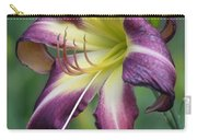 Sensual Refinement Carry-all Pouch