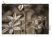 Sepia Dreams Carry-all Pouch
