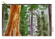 Sequoia Park - California Sketchbook Project  Carry-all Pouch