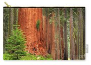 Sequoias Carry-all Pouch by Inge Johnsson