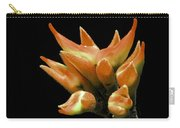Serene - Unruffled Carry-all Pouch