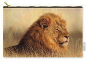 Serengeti Glow Carry-all Pouch by David Stribbling