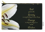 Serenity Prayer 3 Carry-all Pouch