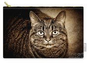 Serious Tabby Cat Carry-all Pouch