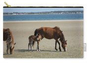 Shackleford Banks Foal Carry-all Pouch