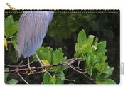 Shades Of Blue And Green Carry-all Pouch