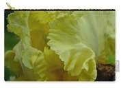 Shades Of Iris Carry-all Pouch