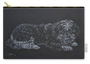 Shadow Carry-all Pouch by Michele Myers