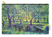 Shadows At Noon - Indian Landscapes Carry-all Pouch