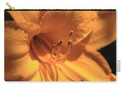 Day Lily Shadows Carry-all Pouch