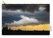 Shark Cloud Carry-all Pouch by David Lee Thompson