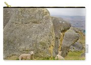 Sheep On A Mountain Pasture Between Granite Rocks Carry-all Pouch