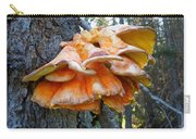 Shelf Fungus In Carl E. Wynn Nature Center In Homer-ak   Carry-all Pouch