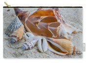 Shell Collectors Dream Carry-all Pouch