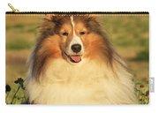 Shetland Sheepdog Carry-all Pouch