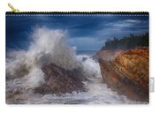 Shore Acre Storm Carry-all Pouch by Darren  White
