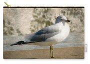 Shore Bird Carry-all Pouch