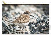 Shorebird Beauty Carry-all Pouch