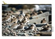 Shorebird Rest Time Carry-all Pouch