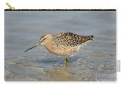 Short-billed Dowitcher, Breeding Carry-all Pouch