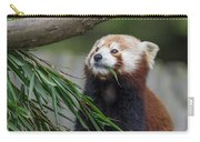 Shrinking Red Panda Carry-all Pouch
