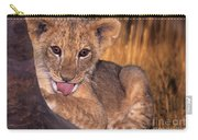 Shy African Lion Cub Wildlife Rescue Carry-all Pouch