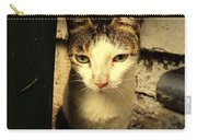 Shy Cat Carry-all Pouch