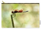 Side View Of A Calico Pennant Carry-all Pouch