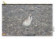 Sidestepping Sandpiper Carry-all Pouch