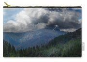 Sierra Nevada Lighting Strike Carry-all Pouch