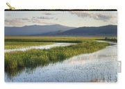 Sierra Valley Wetlands Carry-all Pouch
